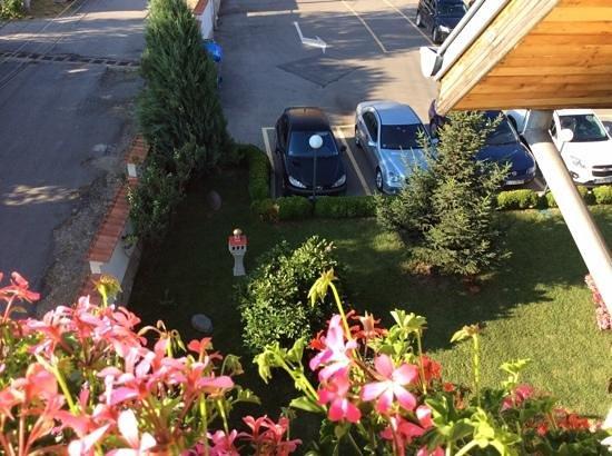 Jasmin Hotel : вид с балкона отеля