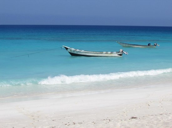 Socotra Island: Shouab
