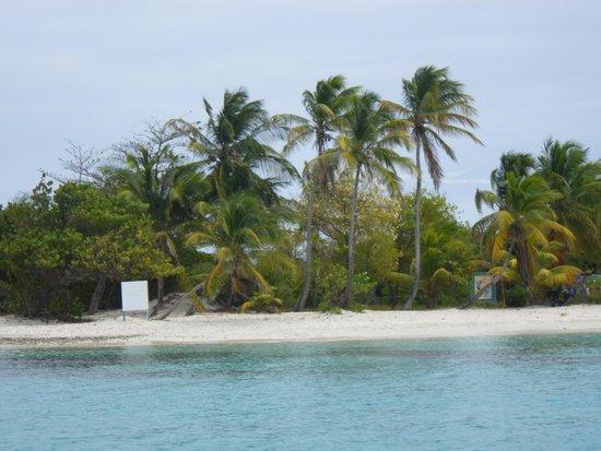 Tobago Cays Marine Park : la plage