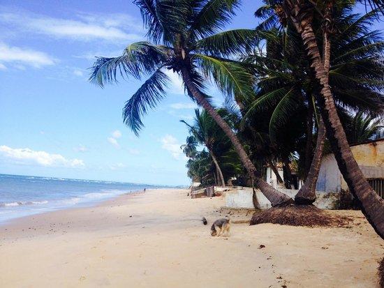 Pousada Riacho Doce : Beach