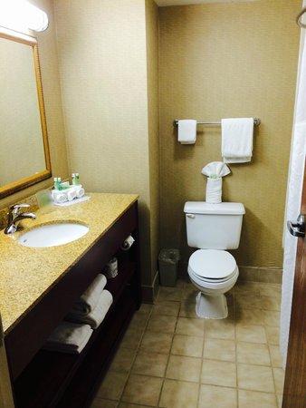 Holiday Inn Express Dayton-Huber Heights: Bathroom