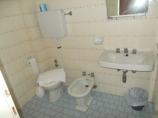 Hotel Colombo: Il bagno :modesto ma comodo essendo in camera (e doccia OK )