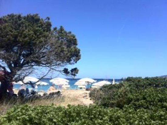 Stelle Marine Hotel & Resort : Spiaggia