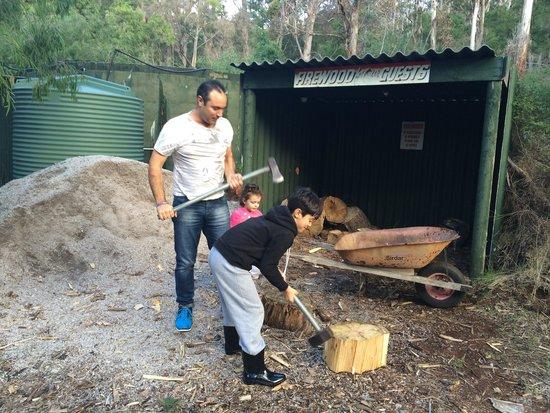 Augusta Sheoak Chalets: City kids loving chopping wood #countrylife