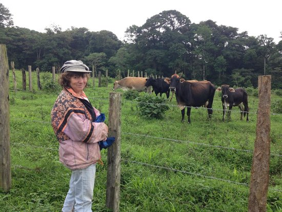 Finca Lindos Ojos: This is Katrin and the cows that produce our milk and the delicious cheese served