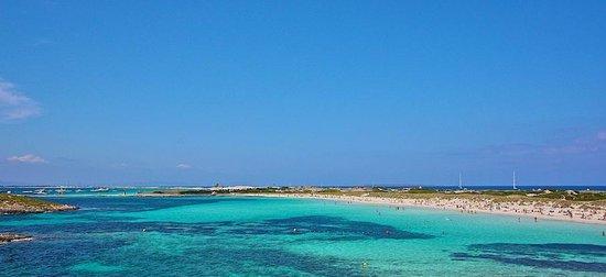 Faro de La Mola: Playa de ses Illetes