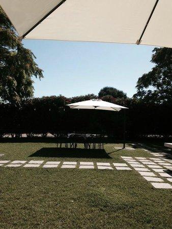 Cefalicchio Bed & Breakfast: Il parco davanti la villa