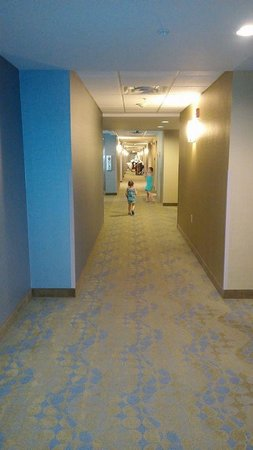 Comfort Suites Knoxville West-Farragut: Hallway
