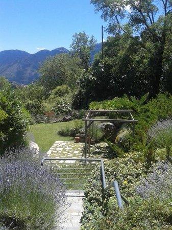 Astra Hotel: Garden