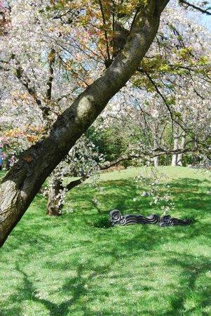 Albert Kahn Musee et Jardins : Le jardin japonais
