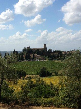 Tuscany Bike Tours: Tuscany