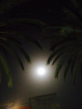 HD Parque Cristobal Gran Canaria: Amazing full moon