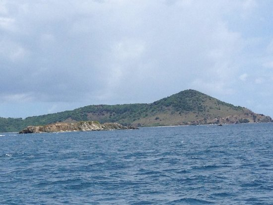 Morningstar Sailing and Power Charters : On the way to St. John's .
