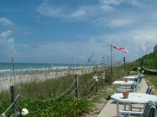 Sea Scape Motel - Oceanfront Getaway : View of the beach