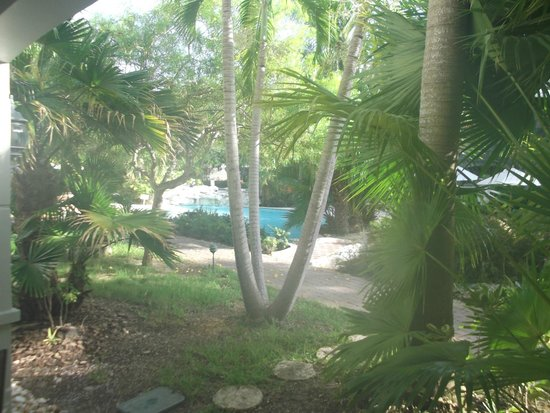 Royal West Indies Resort : View from Unit 611
