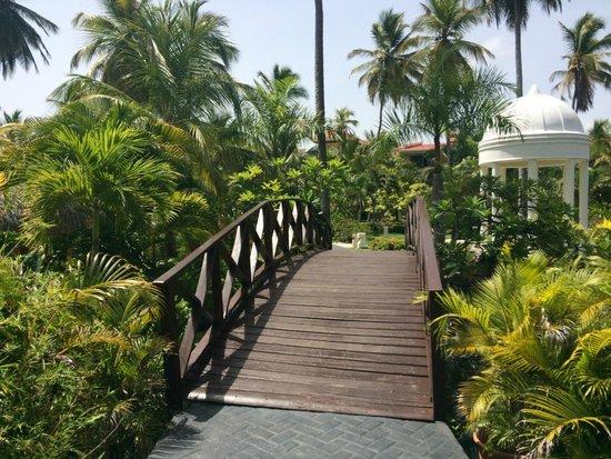 Paradisus Palma Real Golf & Spa Resort: Caminho para recepção