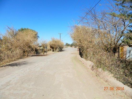 Altiplanico Atacama: The walk into town....part 3