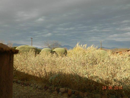 Altiplanico Atacama: View towards to volcanos from my room