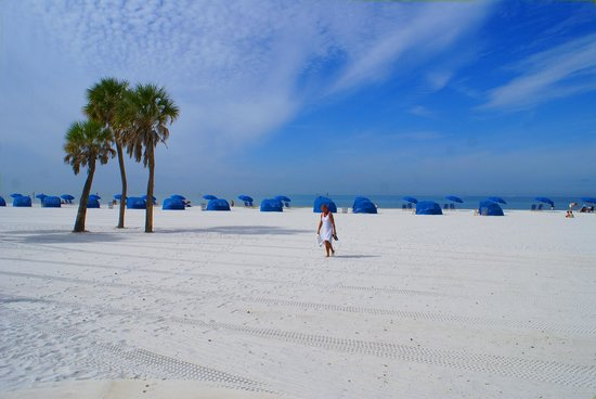 Hilton Clearwater Beach Resort & Spa: Morning Stroll on Beautiful Clearwater Beach