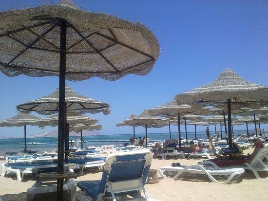 Cyrene Island Hotel: Spiaggia