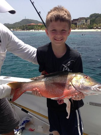 Early Bird Fishing Private Charters: Snapper caught bottom fishing