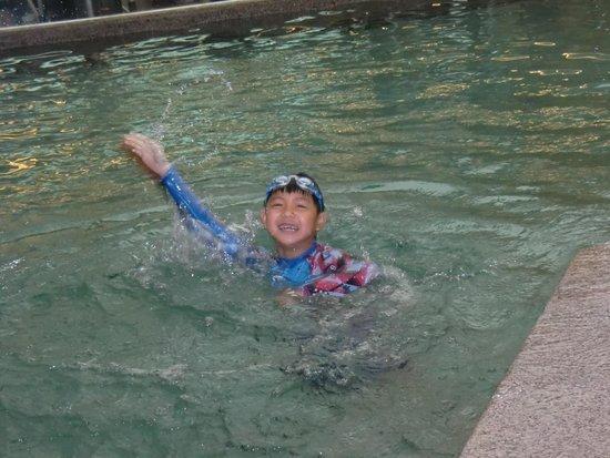 Fraser Place Central Seoul: swim pool