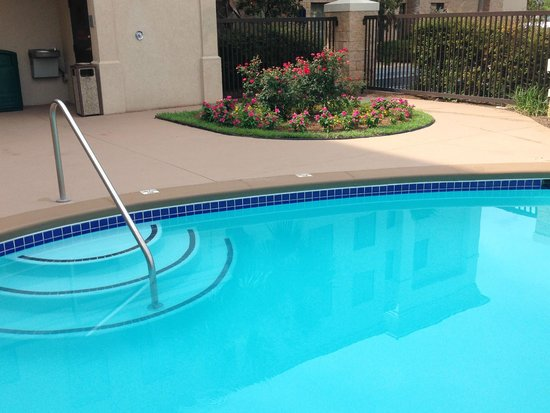 Hampton Inn Suites Valdosta Conference Center: THE POOL!