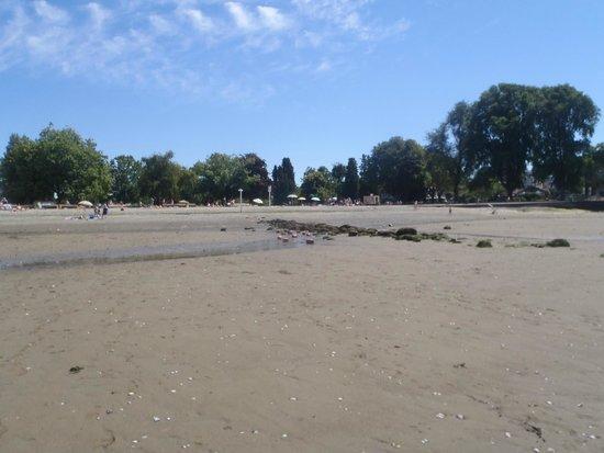 Kitsilano Beach: The sandy beach