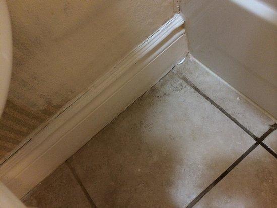 Super 8 Cambridge/Kitchener/Waterloo Area: Bathroom filth