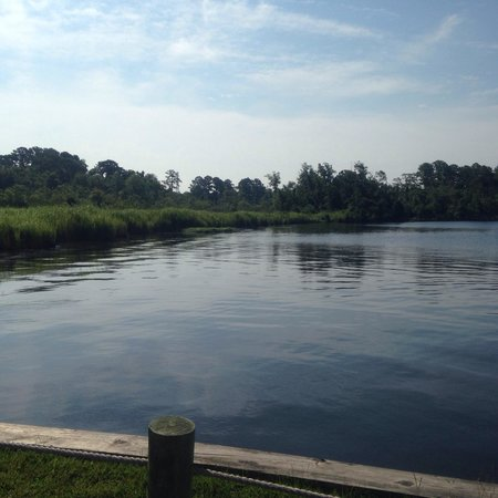 New Bern KOA : Pier - no swimming here. Possible gators?