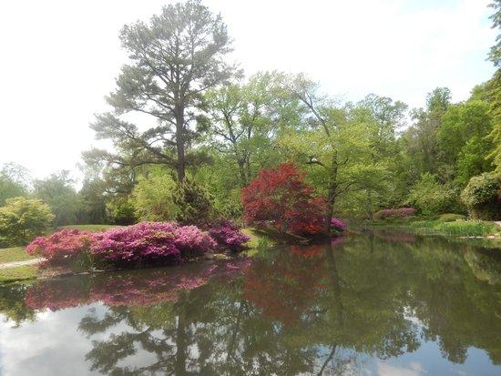 Maymont : Asian Garden