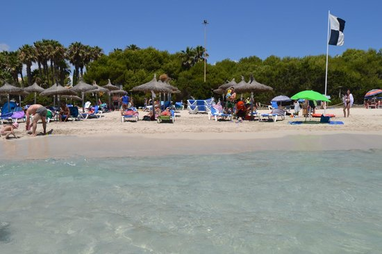 Hipotels Mediterraneo Club : Spiaggia