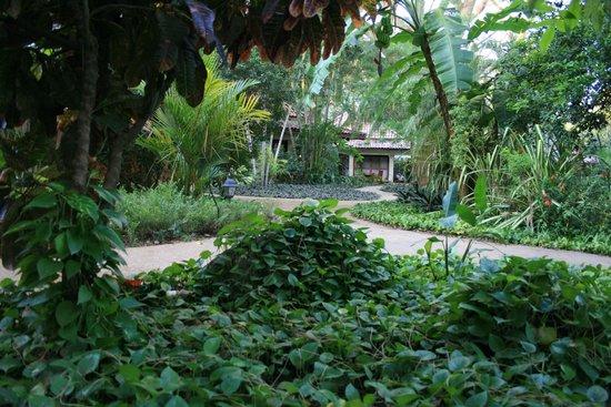 Hotel Capitan Suizo: Hotel`s Garden