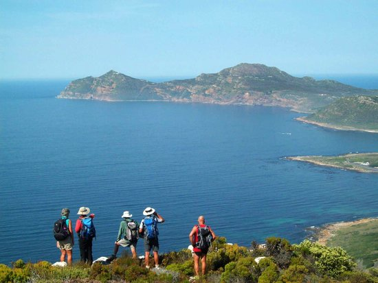 Cape and Table Mountain Tours