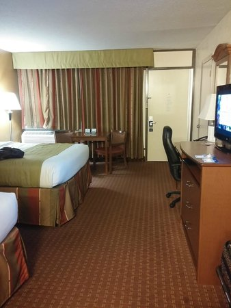 Best Western Asheville Tunnel Road: my room