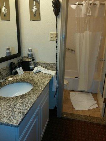 BEST WESTERN Asheville Tunnel Road: bathroom
