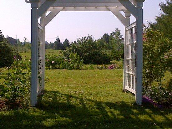 Victoria Inn: garden view