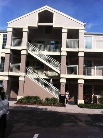 Staybridge Suites Lake Buena Vista: vista de uno de los edificios
