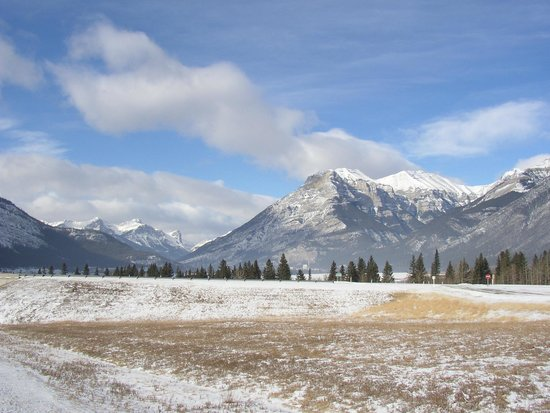 Hilton Garden Inn Calgary Airport : On the road to Banff / Winter