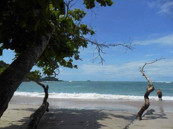 Tabulia Tree Hotel & Villas: Playas de Manuel Antonio