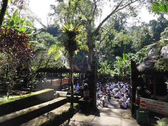 Luhur Batukaru Temple: Ceremony