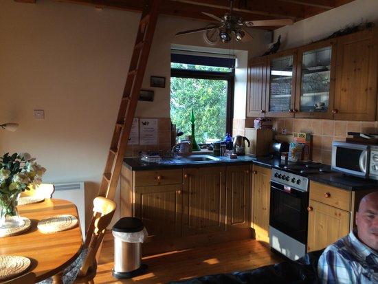 Windy Arbour Farm: Kitchen