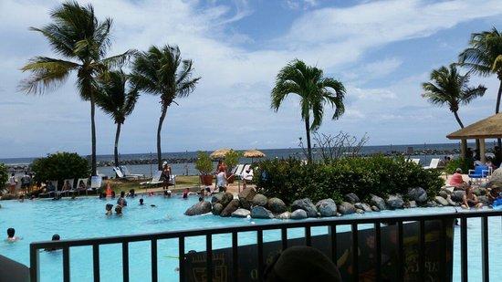 Embassy Suites by Hilton Dorado del Mar Beach Resort: Vista de la piscina desde el restaurante
