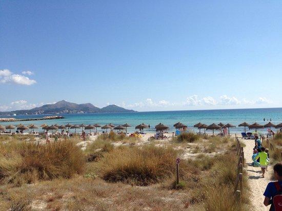Grupotel Parc Natural & Spa: Strand