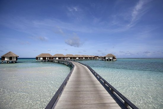Velassaru Maldives : Water Villa Area