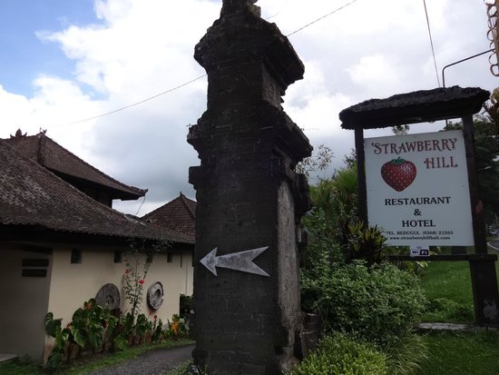 Strawberry Hill Hotel: Road view