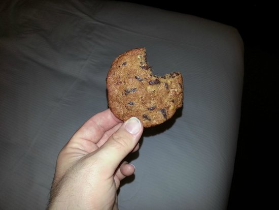 Doubletree Houston Intercontinental Airport : The Cookie... slightly altered.