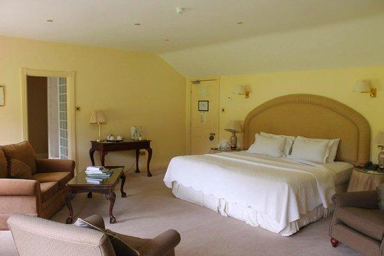 Rathsallagh House: Beautiful spacious room