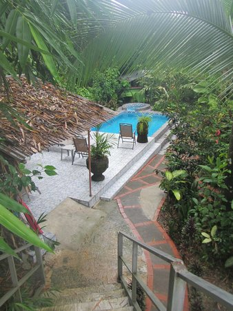 "La Posada Private Jungle Bungalows: view of pool area from ""observation deck"""