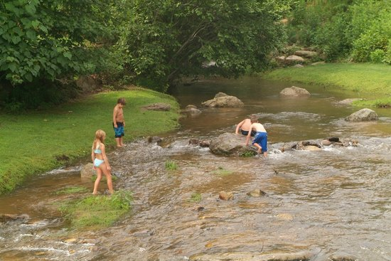 Rumbling Bald Resort on Lake Lure: Trout Stream that feeds into Lake Lure